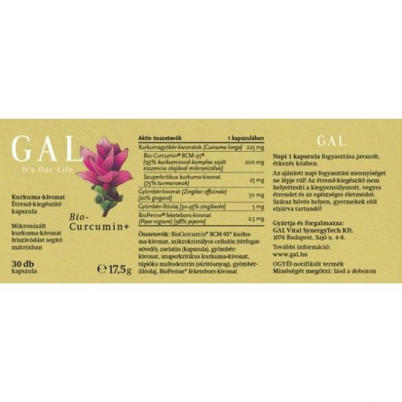 GAL Biocurcumin+